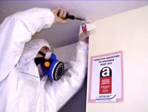 asbestossurveyor